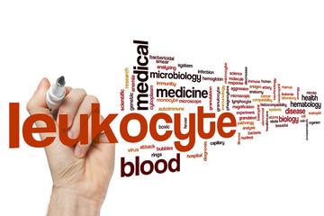 Leukocyte word cloud