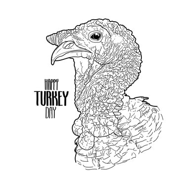 Vector turkey head