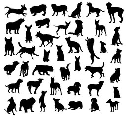 Dog And Puppy Pet Animal Silhouettes, art vector design