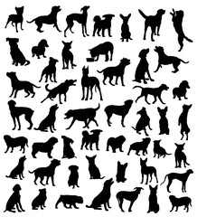 Dog Action and activity Silhouettes, art vector design