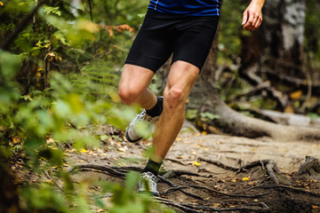 Fototapete - running man marathon runner in woods over tree roots. tense muscles in legs