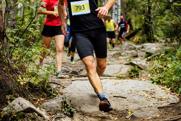 Fototapete - group of runners marathoners are running one behind another in woods on rocks