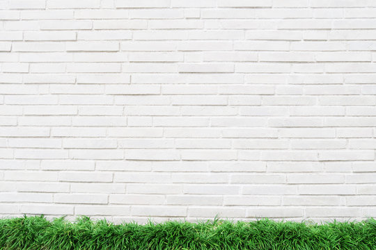 white wall grass background