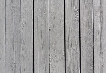 Gray wooden fence texture.