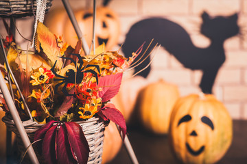 Halloween composition of autumn leaves and flowers in the basket with crawling spider on it. Smiling pumpkins, black cat and brick wall at the background.