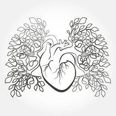 Human heart and lungs like a tree branch. Anatomy art design vector.