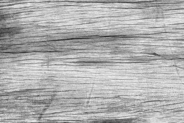 Wood background Black and White soft wood surface texture high q