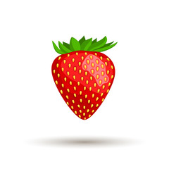 Vector illustration of a bright ripe strawberry isolated