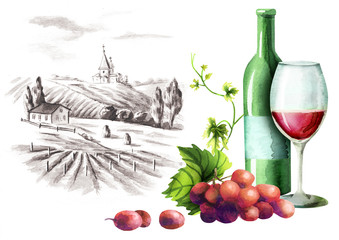 Red wine, grapes and landscape