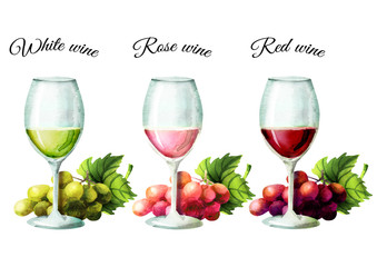 Colors of wine. Watercolor