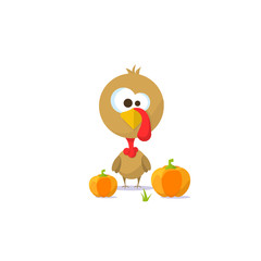 Turkey and pumpkins. Vector illustration