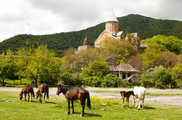The family of horses and the Ananuri castle on the background.