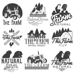 Vector set of farm labels. Monochrome logos, badges, banners and emblems in vintage style. Isolated illustration