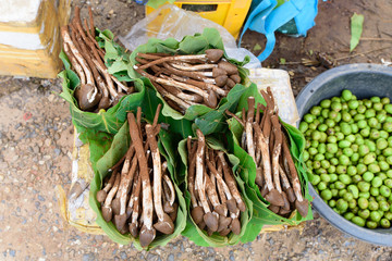 Termite Mushroom    in banana leaf that sold in the market.