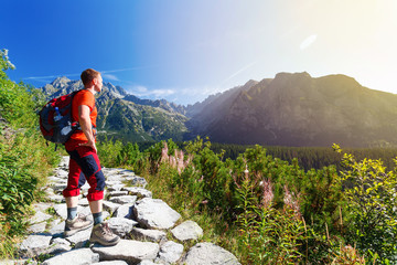 Man standing on the path, looking at mountains