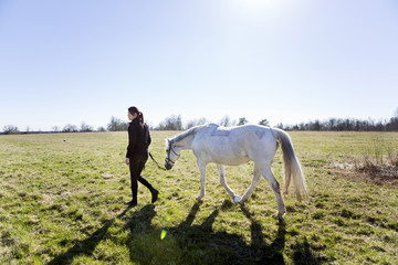 Woman walking with horse on field against clear sky