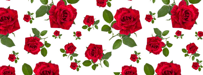 web cover pattern red rose on a stalk of green leaves