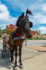 Horse carriage at Wat Phra That Lampang Luang in Lampang, Thailand