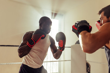 Fighter training with partner in boxing ring at gym