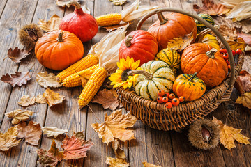 Autumn still life with pumpkins, corncobs and leaves