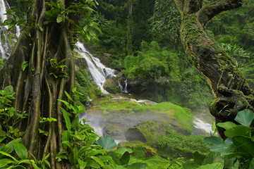 Deurstickers Jungle Thailand jungle with waterfalls