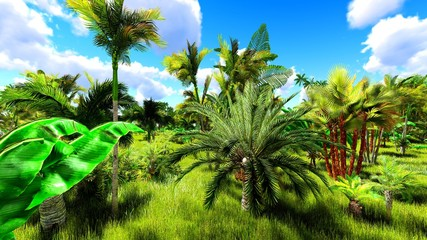 Tropical jungle during a day 3d rendering