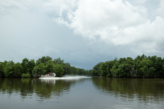 Airboat tour of New Orleans Swamp
