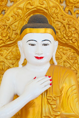 close up Myanmar Buddha white skin golden color.
