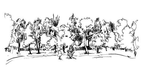 Hand drawn trees.