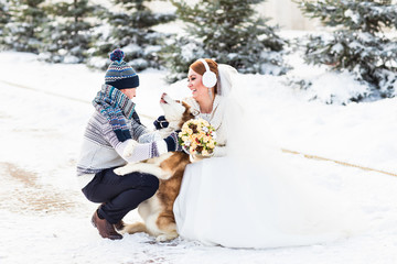 bride and groom with dog Huskies in winter