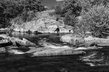 cascade at Burleigh Falls