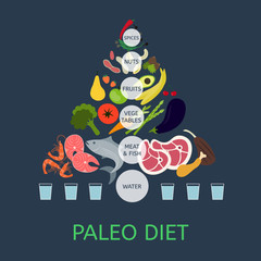 Paleolithic Diet Pyramid. Infographic about healthy food.