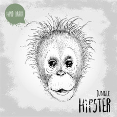 Hand drawn sketch style illustration of monkey face. Jungle Hipster. Chinese zodiac sign. Orangutan kid. Vector illustration.