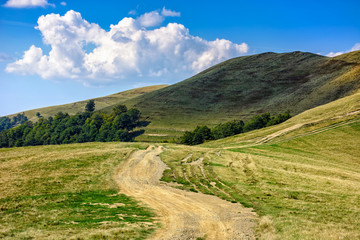 path through hill side meadow in Carpathians