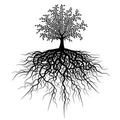 татуировка дерево с корнями в черном цвете на белом фоне.изолированный