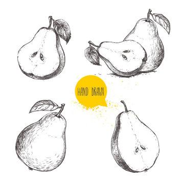 Set of hand drawn sketch style pears. Sliced ripe pears. Vintage organic food illustration.
