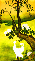 Two white birds and tree