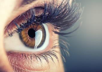 Close-up of woman's eye. macro beautiful female eye.