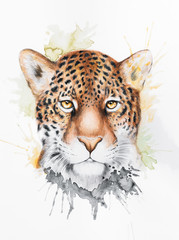 Watercolor illustration of a jaguar