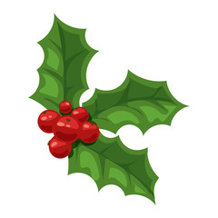 Christmas berry vector illustration.