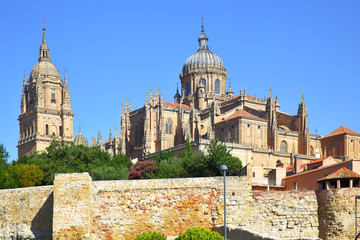 Wall Mural - Old and New Cathedrals in Salamanca