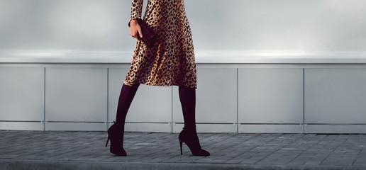 Street fashion concept - stylish elegant woman in leopard dress Wall mural