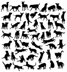Cat and Dog, Pet Animal, Silhouettes, art vector design