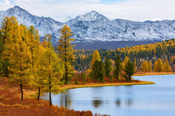 Autumn landscape with snow capped mountains, forest and lake. Natural background. Lake Kidelyu, Ulaganskiy pass, Altai, Siberia, Russia