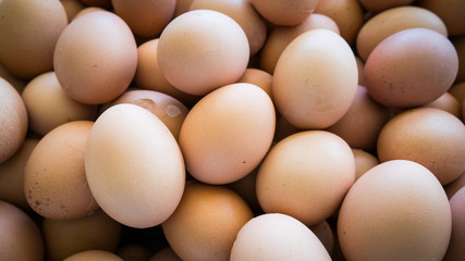 Group of eggs texture background