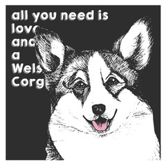 Vector close up portrait of welsh corgi, isolated on black square background. All you need is love and a dog.
