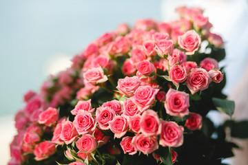 Huge luxury bouquet of pink roses