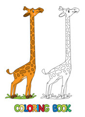 Funny Giraffe. Coloring book