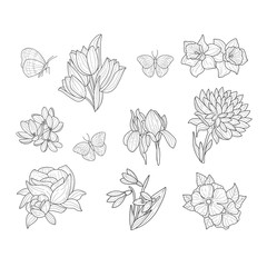 Spring Flowers And Butterflies Isolated Hand Drawn Realistic Sketches