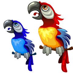 Two colorful blue and red tropical parrots